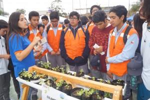 10 Jóvenes recibieron plantas de regalo